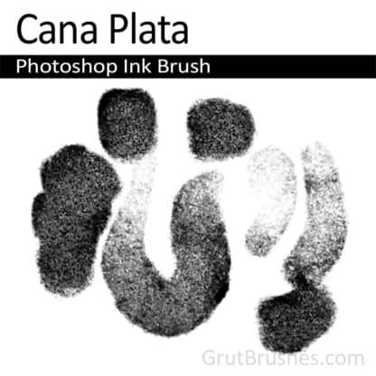 Cana Plata - Photoshop Ink Brush
