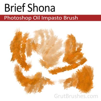 Brief Shona - Impasto Oil Photoshop Brush