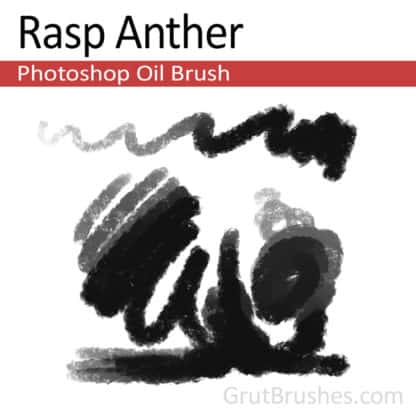 Rasp Anther - Photoshop Oil Brush
