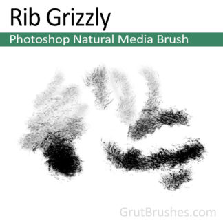 Photoshop Natural Media Brush for digital artists 'Rib Grizzly'